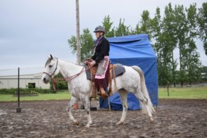 better at horse riding after quitting alcohol