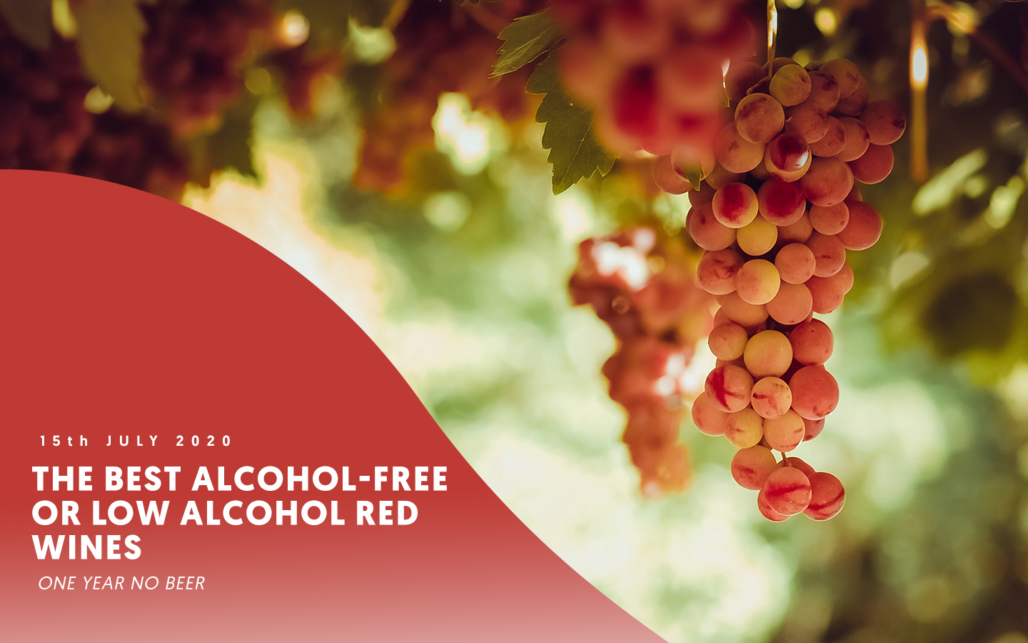 The best alcohol-free or low alcohol red wines